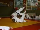 Jiu Jitsu Dan-Pruefung 2013 - 1