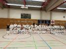 Wir danken allen Karatekas für ihr zahlreiches Erscheinen beim Inyo Ryu Karate Turnier 2016.