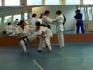 Lehrgang im Jiu Jitsu 2