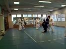 Lehrgang im Jiu Jitsu 3