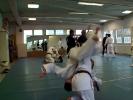 Lehrgang im Jiu Jitsu 4