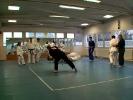 Lehrgang im Jiu Jitsu 5