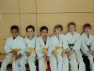 Die KAMINARI-Judokämpfer