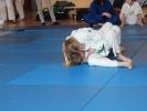 Judoturnier bei Shindo 2013 - 2