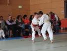 Judoturnier bei Shindo 2013 - 3