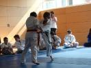 Judoturnier bei Shindo 2013 - 4