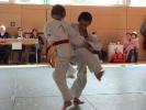 Judoturnier bei Shindo 2013 - 6