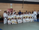 Judoturnier bei Shindo 2013 - 7