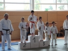 Judoturnier bei Shindo 2013 - 9