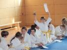Judoturnier bei Shindo 2013 - 11
