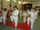 Der Mae Geri, der gerade Vorwärts-Tritt gehört zu jeder Karate-Prüfung.