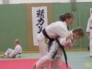 Aufwärmen beim Karate-Nikolausturnier 2010