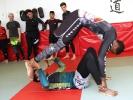 Akrobatische Aufwärmübungen bringen die fürs Grappling nötige Fitness.