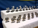 Pokale bei der offenen Landesmeisterschaft im Jiu Jitsu 2010