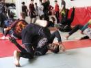 Lehrgangsleiter Marvin Castelle demonstriert eine Rückwärtsrolle auf einem 10th Planet Jiu Jitsu-Seminar im Mai 2017