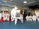 Beim Familien-Judo trainieren Eltern gemeinsam mit ihren Kindern.