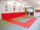 Die Matte für alle japanischen Sportarten in der Sportschule KAMINARI