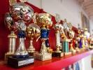Die Pokalgalerie der Sportschule KAMINARI zeigt nur einen kleinen Teil der Wettkampferfolge aus 30 Jahren.